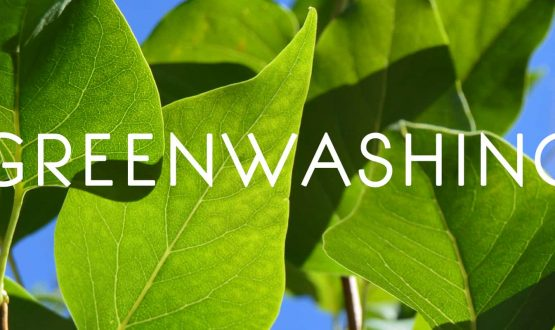 Portada-greenwashing-identificar