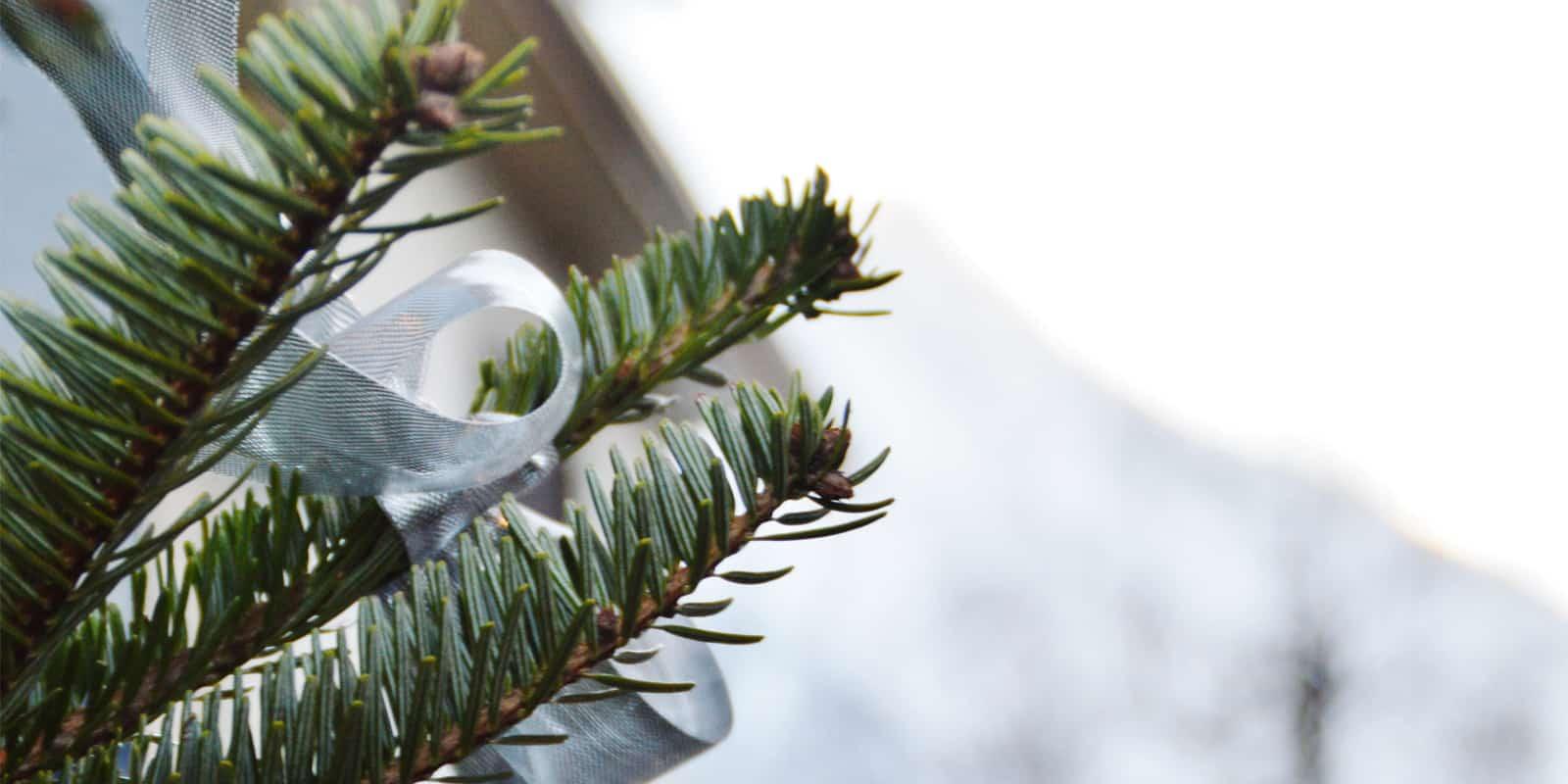 Navidades sostenibles y conscientes