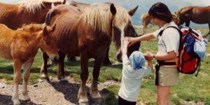 Portada-7-ideas-regalos-originales-sostenibles-Día-de-la-Madre