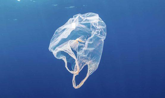 Portada-La historia del plástico